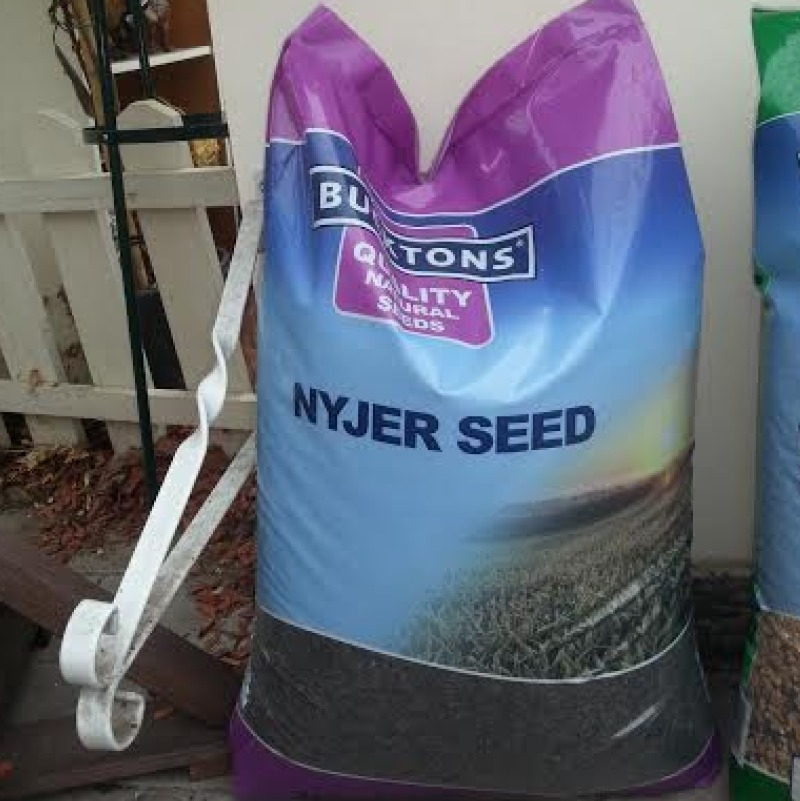 Large Bags of Nyjer Seed