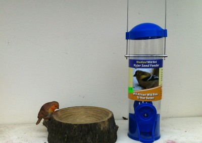 Nyger Seed Feeder (Small)