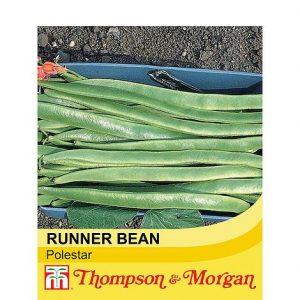 Runner bean polestar at beechmount garden cenrtre