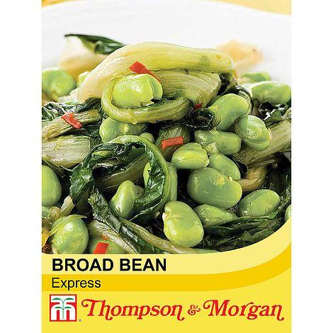 broad bean express at beechmount garden centre