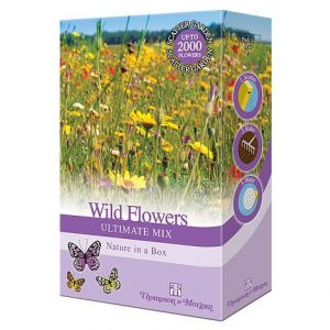 wildflower ultimate mix at beechmount garden centre