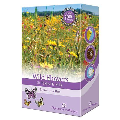 wildflower ultimate mix at beechmount garden centre