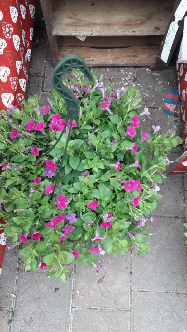basket at beechmount garden centre