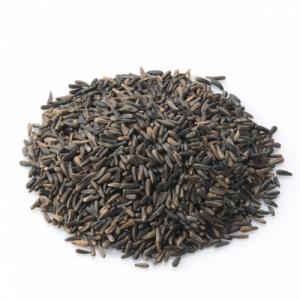 Nyjer seed at beechmount garden centre