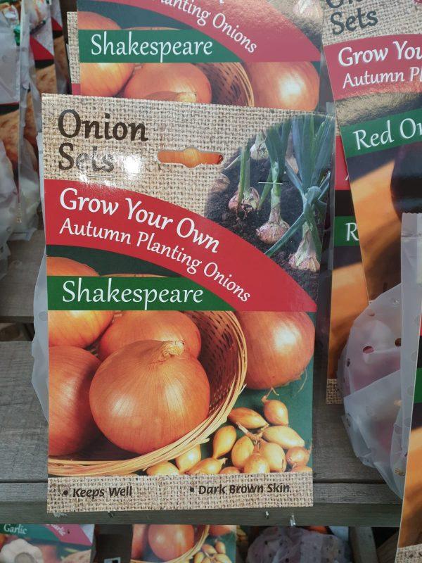 shakespeare onion sets at beechmount garden centre