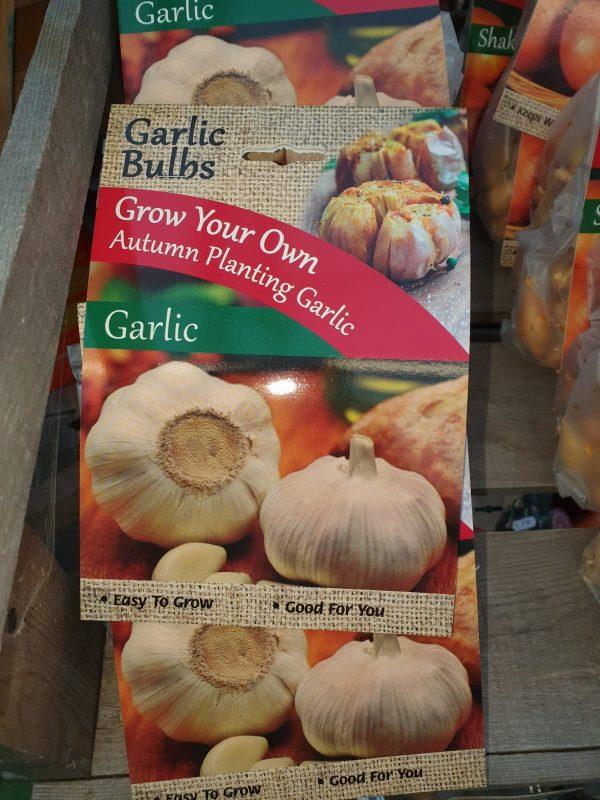 garlic at beechmount garden centre