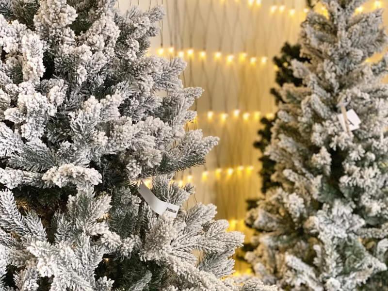 christmas trees for sale navan