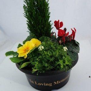 Grave-bowl at beechmount garden centre