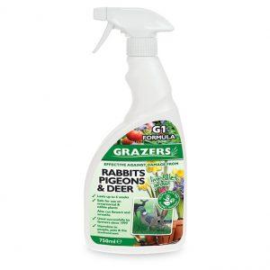 grazers rabbit