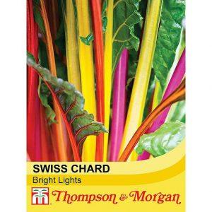Swiss Chard 'Bright Lights' at beechmount garden centre