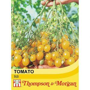 Tomato 'Ildi' at beechmount garden centre