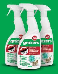 grazers lily beetle spray organic ata beechmount garden centre