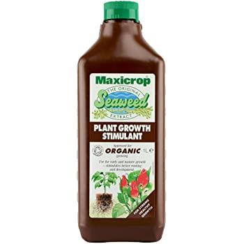 maxicrop seaweed all purpose at beechmount garden centre