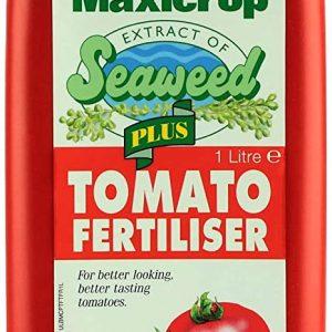 maxicrop tomato food AT BEECHMOUNT GARDEN CENTRE