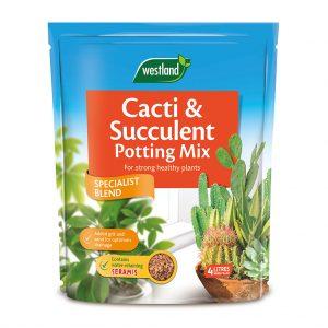 Westland-Indoor-Compost-Cacti-4L at beechmount garden centre