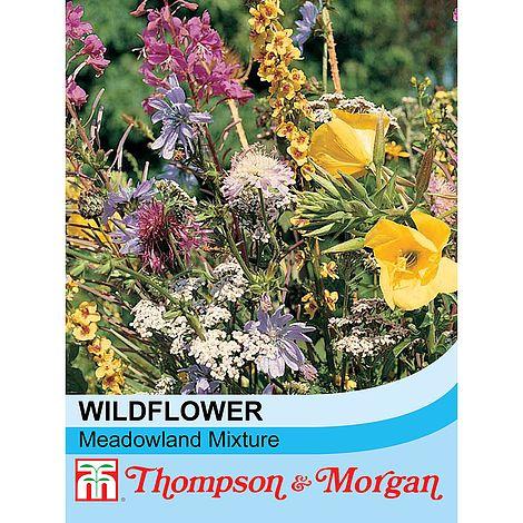 wildflower meadowland at beechmount garden centre