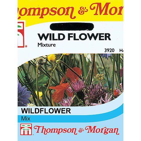 wildflower mixture at beechmount garden centre