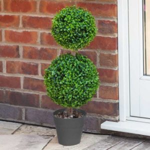 duo topiary tree at beechmount garden centre