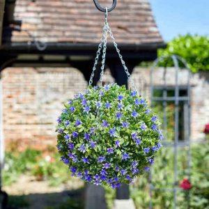 topiary lily ball at beechmount garden centre