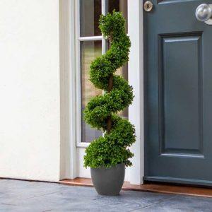 topiary twirl at beecmount garden centre
